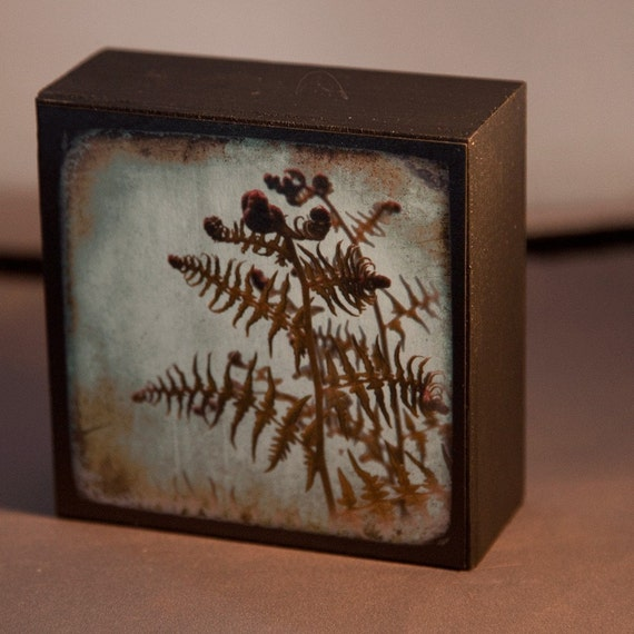 Blue Green Fern Photograph on Wood Panel--The Unfolding--4x4 Fine Art