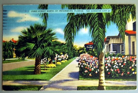 Vintage Postcard Florida 1940s St. Petersburg, Garden with Palm Trees