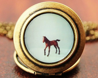 The Horse - Photo Locket Necklace - Collaboration with SusannahTucker