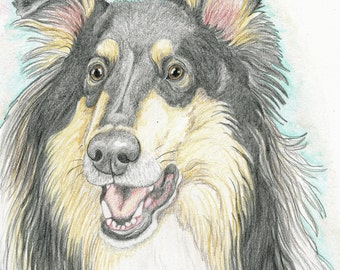 Your Pet Custom Original 9 x 12 Pencil Drawing Dog Art-Carla Smale