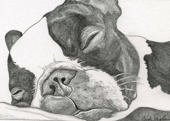 Custom Pet Portrait-Original Graphite or Colored Pencil Drawing-16 x 20- Dog Art-Carla Smale