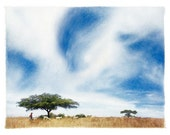 MEXICAN SAVANNA, Original, Signed Polaroid Transfer Composite matted to 8x10 (other sizes available)