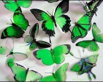 3D Butterflies - 6 x Green for Weddings, Cake Toppers, Crafts, Wall Art, Nurseries and  Scrapbooking
