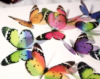 B075 x 12 3D Butterflies for use in Weddings, Decorations and Crafting