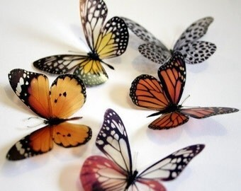 12 x 3D Natural Transparent Butterflies for use in Decorating or as a Craft Supply