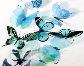 6 x Special Aqua 3D Butterflies great for Weddings, Crafts