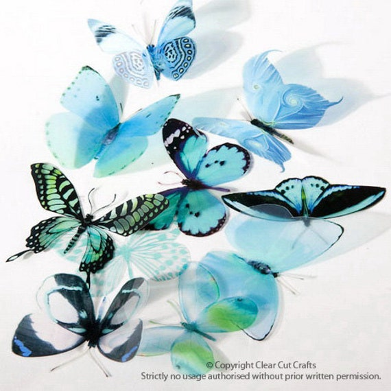 6 x Special Aqua 3D Butterflies great for Weddings, Crafts