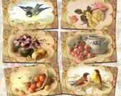 CHaRMiNG Romantic Vintage ArT- Tags/Cards/Note Paper- Birds, Floral, Fruit -Printable Collage Sheet JPG Digital File-Buy 1 Get 1 FREE