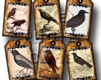 Crows/Ravens PRiMiTiVe & TaTTeReD Vintage Graphics Mini Hang/Gift Tags -INSTaNT DOWNLoAD- Printable Collage Sheet Download JPG Digital File