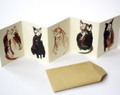 Mini cat zine concertina book || FIVE CURIOUS CATS