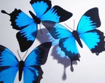 5 x 3D Butterflies Ulysses Blue Black Butterfly Scapbooking, Nursery, Baby, Bedroom, Bathroom, Kitchen Decor, Mirror, Gift, Craft, Card