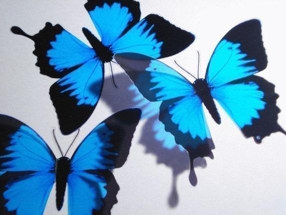 10 x 3D Butterflies Ulysses Blue Black Butterfly scapbooking nursery baby bedroom bath kitchen decor