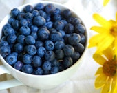 Kitchen Art, Still Life Photography, Food Photo, Blueberries, Yellow, White, Blue, Berries, Breakfast- 5x7 inch Print  Good Morning Sunshin