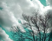 Nature Decor Spring Teal Tree Photograph Aqua Art Photo of Clouds and Trees in the Sky 5x5 Inch Fine Art Photography Print If You Listen