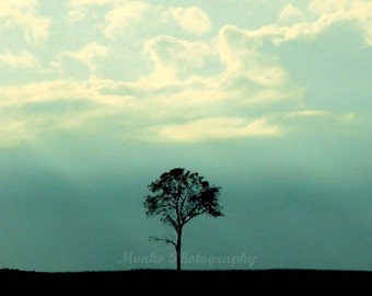 "Nature Photograph, Landscape Picture, Teal, Blue, Sky, Clouds, Monochrome,  Minimalist, Tree Photography- 5x5 inch Print, ""One Tree"""