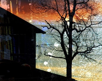 CLEARANCE Winter Home Decor, Photography, Silhouette, Rustic Picture, Abstract Landscape, Orange, Blue, Night, Sky, 5x7 inch Print