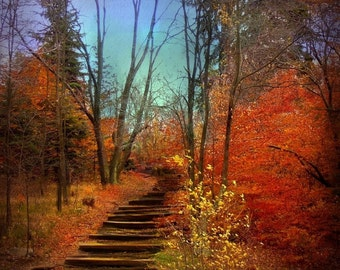 Autumn Photography, Nature Photo, Landscape, Fall, Trees, Blue, Red, Orange, Yellow, Brown, Woods - 5x5 inch Print -Fall as I Remember It