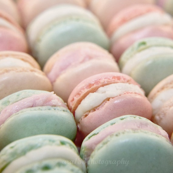 Pastel Color French Macarons Photo Food Photography Still Life Photo Pink and Blue 8x8 Inch Fine Art Photography Print Parisian Pastel
