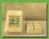 6 SOY clam shell tarts - 6 cubes each - You choose scents