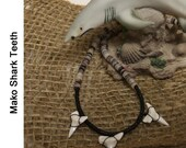 Shark Tooth Trio and Hammershell Necklace