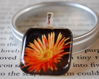 Gerber Daisy - Daisy Photo - Orange Daisy - Coming Up Daisies Glass Tile Pendant by Happy Shack Designs