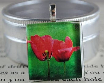 Love Blooms Fine Art Photo Glass Tile Pendant - Tulips - Red Blossoms - Red Flowers - Nature Photography