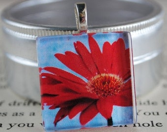 Red Daisy Fine Art Photo Glass Tile Pendant - Red Daisy - Red Blossom - Red Flower - Nature Photography