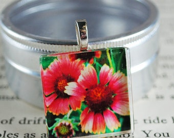 Light My Fire Fine Art Photo Glass Tile Pendant - Fiery Flower - Beach Flower - Nature Photography
