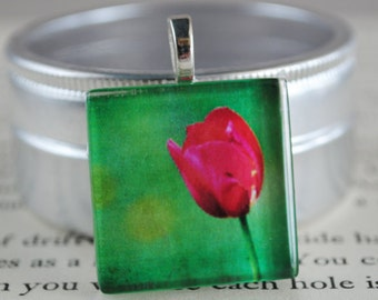 Fairfax Tulip Fine Art Photo Glass Tile Pendant - Tulip Bloom - Tulip Pendant - Nature Photography Pendant