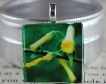Awakening Fine Art Photo Glass Tile Pendant - Yellow Daffodil - Yellow Flower Bud - Nature Photography Pendant