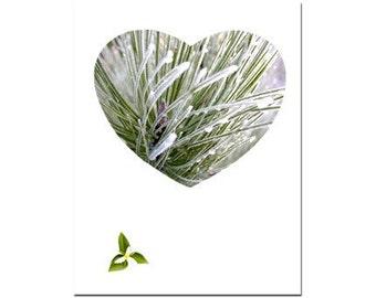 Greeting Card Frozen Heart Handmade Original Art Photography no.3