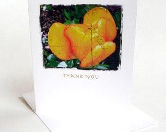 Thank You Card Tulip Botanical