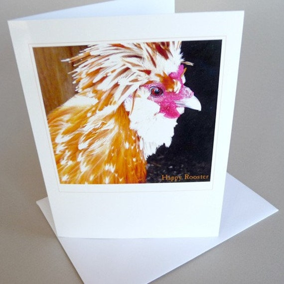 Rooster Greeting Card Andy Warhol Spring Blank Art Photography
