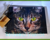Original Kitty Cat Photo Journal (Notebook, sketch book, note pad)