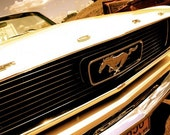 Icon - 8x10 vintage Ford Mustang fine art photo