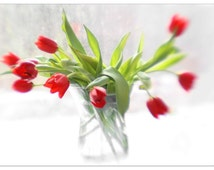 Red Tulips Photo, Still Life Photography,  Floral Art Print,  Floral Wall Decor, Flower Print