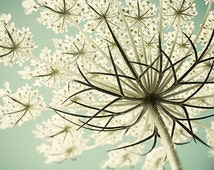 Queen Anne's Lace Photograph, Cottage Chic Decor, Pastel Wall Art,  Flower Photography, White Mint Decor,  Still Life