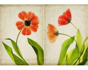 Red Tulip Botanical Print Set, Tulip Art, Scanned Flower, Rustic Wall Decor, Living Room Decor