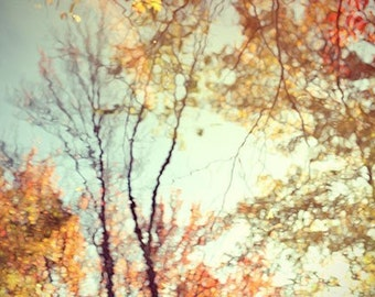 Fall Foliage Photograph Fine Art Print, New England Landscape ,  Autumn Photography,  Reflection, Rustic Wall Decor