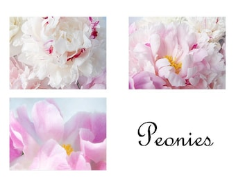Peony Photo Cards, Mothers Day Gift, Three  Blank Cards, Peony Flower Photographs, Floral Greeting Card Set