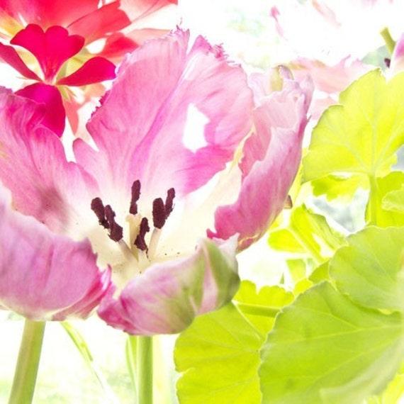 Pink Tulip Card,  Fine Art Photo Card, Blank Flower Greeting Card, Floral Card