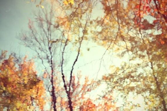 Nature Photography, Abstract Art, Fall Wall Decor,  Orange, Gold. Woodland Art, Rustic Decor, Tree Photo, Fall Foliage