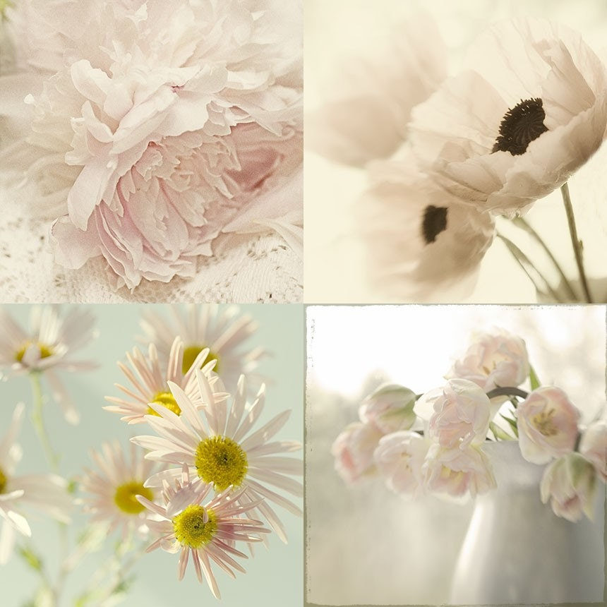 Cottage chic wall decor flower photographs set by judystalus for Shabby chic wall art