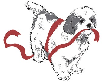 Shih Tzu with Ribbon: 5 Letterpressed Notecards