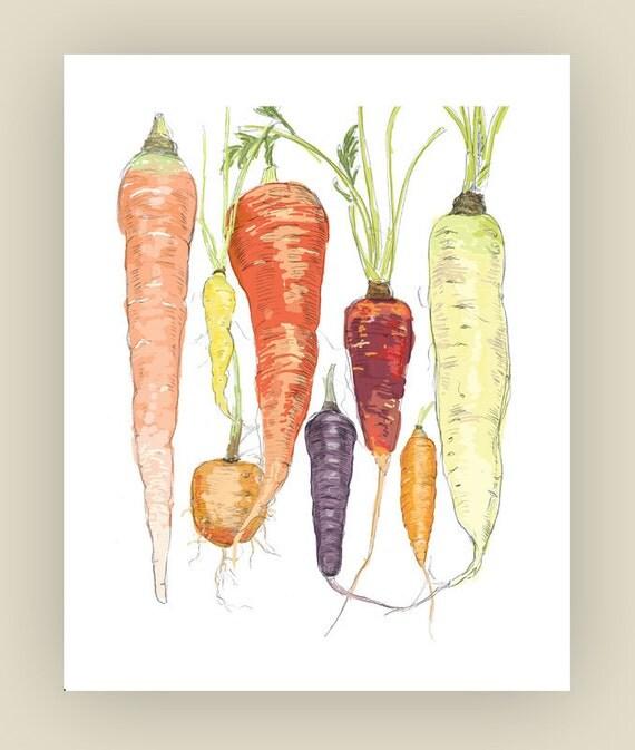 "Carrots Illustration 8"" x 10"" Art Reproduction"