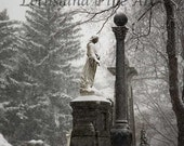 Standing in the Snow (8x10 Fine Art Print)