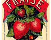 Digital Download of Large 8x10 Vintage French Fraise Label - You Print - Instant Download