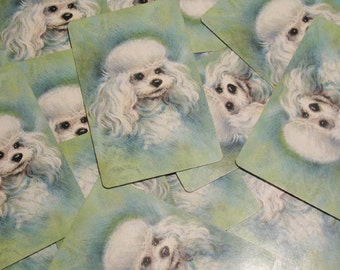 Vintage Hallmark White Poodle on Green Playing Cards - Set of 12