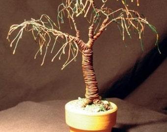 Umbrella Bonsai, wire tree sculpture - Original