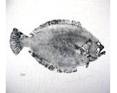 "Very large 24""  Flounder Original GYOTAKU Fish Art Rubbing on muslin"